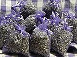 10 x Lavendelsäckchen mit echtem französischen Lavendel - Insgesamt 100g Lavendelblüten als...