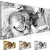 Bilder – Wandbild - Vlies Leinwand - 100 x 40 cm - Löwen Liebe Bild - Kunstdrucke – mehrere...