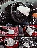 Auto Waschhandschuh Microfibre Wash Mitt Xpassion 2 Stücke Premium Mikrofaser Waschhandschuh zur...