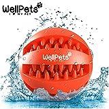 Premium Hundeball 2 Stück | Hundespielzeug Ball aus Naturkautschuk mit Zahnpflege Funktion | BONUS:...