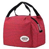 Aosbos Leichte Kühltasche Lunch Tasche Isoliertasche zur Arbeit und Schule gehen 6 Liter, 24,1 x...
