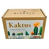 growbro Kaktus, Anzuchtset inkl. Sprhflasche, Ostergeschenk, Geburtstagsgeschenk, Sukkulenten,...