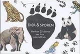 Dier & sporen: Herken 25 dieren aan hun pootafdruk