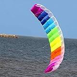 2.7m Regenbogen Dual Line Fallschirm Soft Parafoil Flying Surfing Kite Riesiger großer Regenbogen...