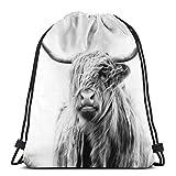 NR Portrait of A Highland Cow 3D Print Drawstring Backpack Rucksack Shoulder Bags Gym Bag for Adult...