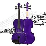 Geige Kolophonium Geige Handgefertigtes Einsteigerinstrument Mit Hartschalenkoffer, Schulterstütze,...