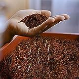 Kokos Blumenerde 70l gepresst - Kokoserde torffrei & ohne Dnger als Humusziegel - Kokossubstrat als...