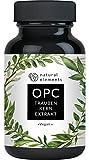 OPC Traubenkernextrakt - 240 Kapseln für 8 Monate - Laborgeprüftes Premium OPC aus europäischen...