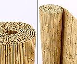 bambus-discount.com Schilfrohrmatten Premium Beach, 160 hoch x 600cm breit Sichtschutz Matten...