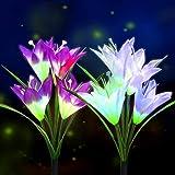 BOIROS Solar Gartenleuchten im Freien, 2er Pack Solar Flower Lights mit 8 Lilienblume, mehrfarbig...