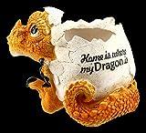 Figuren Shop GmbH Drachen Fantasy-Blumentopf - Home is Where My Dragon is | Blumenübertopf,...