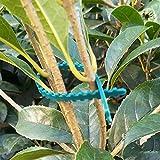 FJROnline 100 Stück 13,5 cm Pflanzenbinder Flexible Pflanzenkabelbinder Kunststoffgrüne...