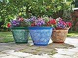 Greenhurst Pack of 3 Brompton Planters - Coloured Pflanzgef Terracotta Blue