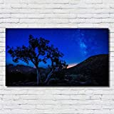 XWArtpic Schöne Nacht Landschaft Sonnenaufgang Sternenhimmel Sterne Baum Berg kinderzimmer...