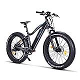 Fitifito FT26 Elektrofahrrad Fatbike E-Bike Pedelec, 36V 250W Heckmotor, 36V 13Ah 468W Samsung Akku,...
