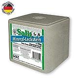 Salzleckstein Leckstein Mineralleckstein Salz 10kg Einzelfuttermittel Nutztiere