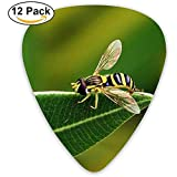 Bee Leaf Grass schwarz gestreifte Plektrum 12er Pack
