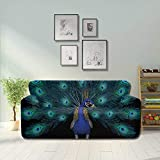 LMFshop Peacock Bird Peacock Feathers Colored Crown Soft Sofa Cover Decorative Sofa Covers Fitted...