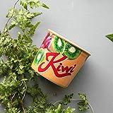BOOMZZ Keramik Tasse Eisbecher Tropischer Regenwald Keramik Kaffee Milch Saft 300ML Kiwi