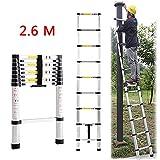 Teleskopleiter Ausziehbare Leiter Haushaltleiter Tragbar Faltbar Leiter Aus Aluminium...