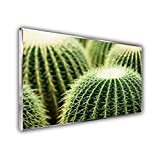 STEINFELD Glas Bild-Infrarotheizung | Deutscher Hersteller | viele Motive 350-1200 Watt Rahmen...