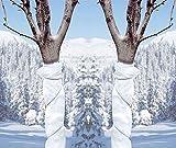 2 Stück Gartenvlies Pflanzenschutzsack Wintervlies Kälteschutzvlies - Für Ihre Pflanzen, Bäume &...