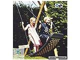Kleine Mehrkindschaukel STANDARD silber/blau für 2 Kinder, 109 x 53 cm (SPR.M.102) - das Original...