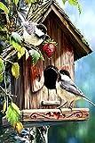WXHYW Neue Adult Puzzles 500 Stück Holz Puzzle-Vogelhaus-Kinder Kunst Freizeitspiel Spaß Spielzeug...