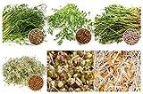 2,6 kg BIO Keimsprossen Mischung -6 Sorten Mix- Keimsaat Samen für die Sprossenanzucht 250g Erbsen,...