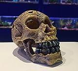 Dark Skull mit Schwarz Zähne ~ Creepy Aquarium Fisch Tank Schüssel Ornament