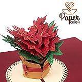 """PaperCrush Pop-Up Karte Weihnachten """"Weihnachtsstern"""" [NEU!] - 3D Weihnachtskarte für Frauen,..."""