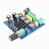 Shiwaki TPA3116D2 Digitalverstrker DIY Amp Board Doppelkanal Audio-Verstrkerplatine...