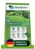 Natureflow Premium Rasen Nachsaat - Besonders Schnellkeimende Rasensamen - Zuverlässige Grassamen...