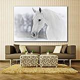 jiushice Rahmen Weißes Pferd im Winter Moderne Wand Tierbilder für Wohnzimmer drucken HD Leinwand...