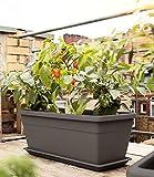 Emsa 518571 Pflanztrog My City Garden, zeitloser Blumentopf, 80 x 35 x 40 cm, frostfest, hohe...