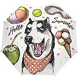 Sommer Hund Welpe Auto Open Umbrella Sun Regen Regenschirm Anti UV Folding Compact Automatic...