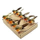 Yolococa Vogel Weihnachtsbaum-Dekoration, Kunsthandwerk, knstliche Federn, Orange, Gre S