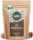Muskatnuss (10 - 12 Stück, 70g, Bio) I Ganze Muskatnüsse I Top Bio-Qualität (DE-ÖKO-005) I...