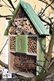 Insektenhotel, KOMPLETT mit Schmetterlingshaus XXL moosgrn grn fr Ntzlinge Biogarten Nistkasten...