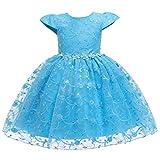 Lazzboy Kleinkind Kind Mädchen Spitze ärmellose Prinzessin Kleid Partei Tüll Cosplay Kleidung...