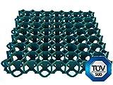 MKV Recycling Rasengitter rasengittersteine Rasenmatten Rasenwaben Rasengitter 50x50 (grün)