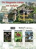 Mini-Gewächshaus - Gärten v. Babylon- Samen der Fledermausblume, Riesengranadilla und Königspalme