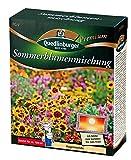 Sommerblumenmischung (ohne Grser) NEU
