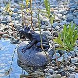 CLGarden Wasserspeier Figur Frosch auf Stein fr Gartenteich Brunnenbecken Dekofigur Wasserspiel...